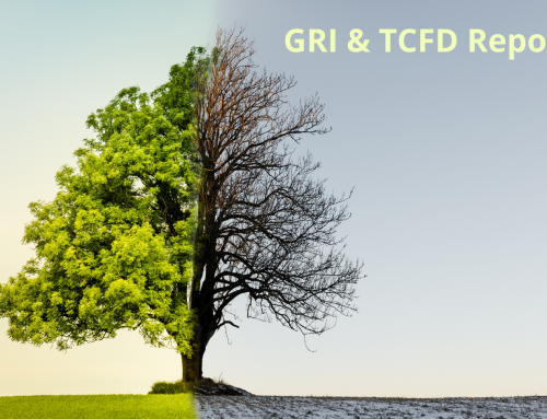How to take advantage of GRI Standards to facilitate the disclosire under TCFD recommendations?