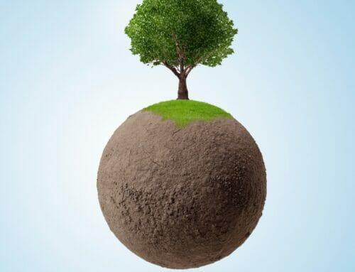 Carbon Management
